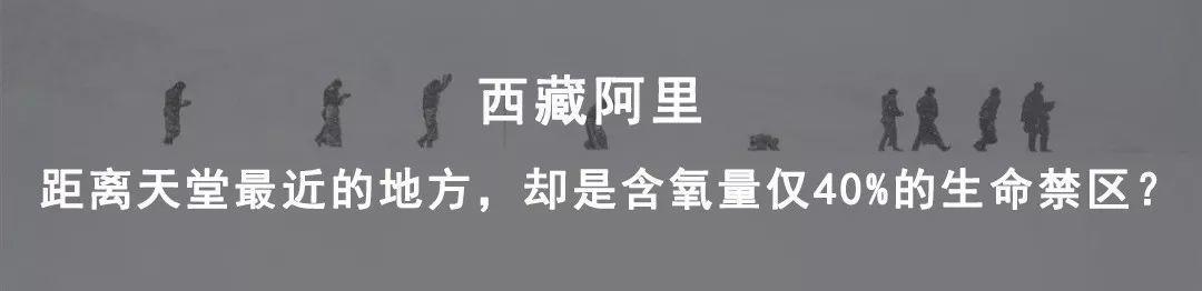 河南许昌 | 30万许昌人的十二时辰:扯、理、撕、挂、拉--新县志