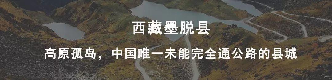 【新县志】2020,加油!--新县志